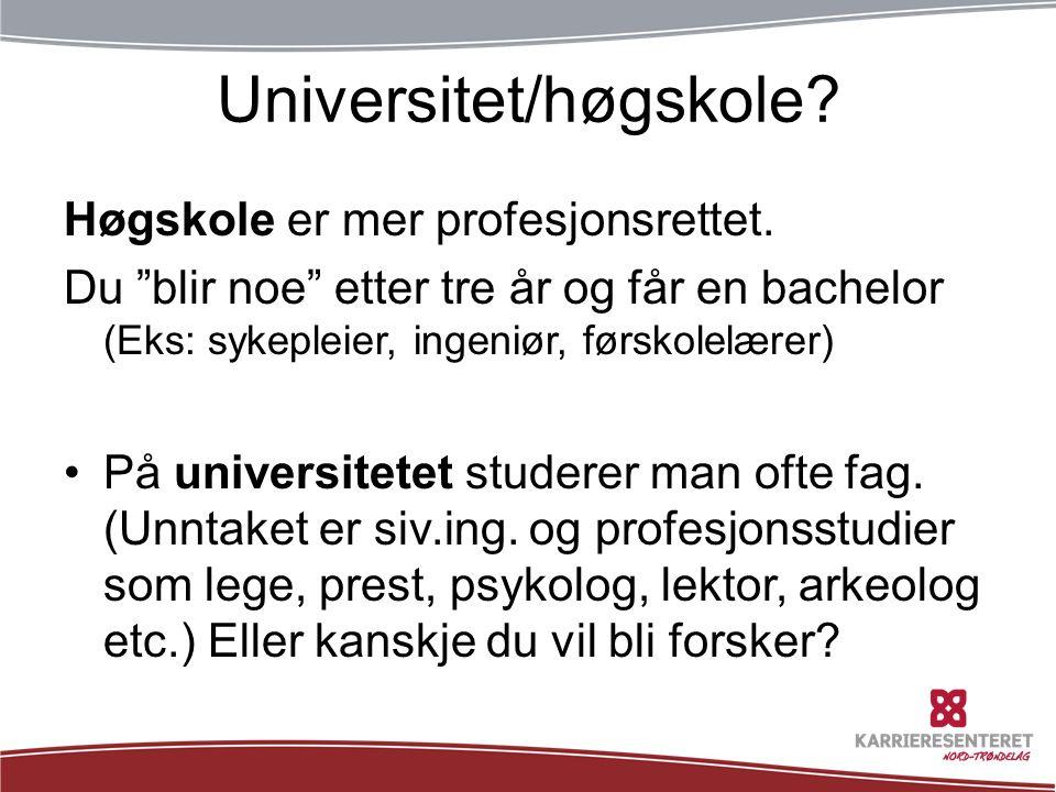 Universitet/høgskole.Høgskole er mer profesjonsrettet.