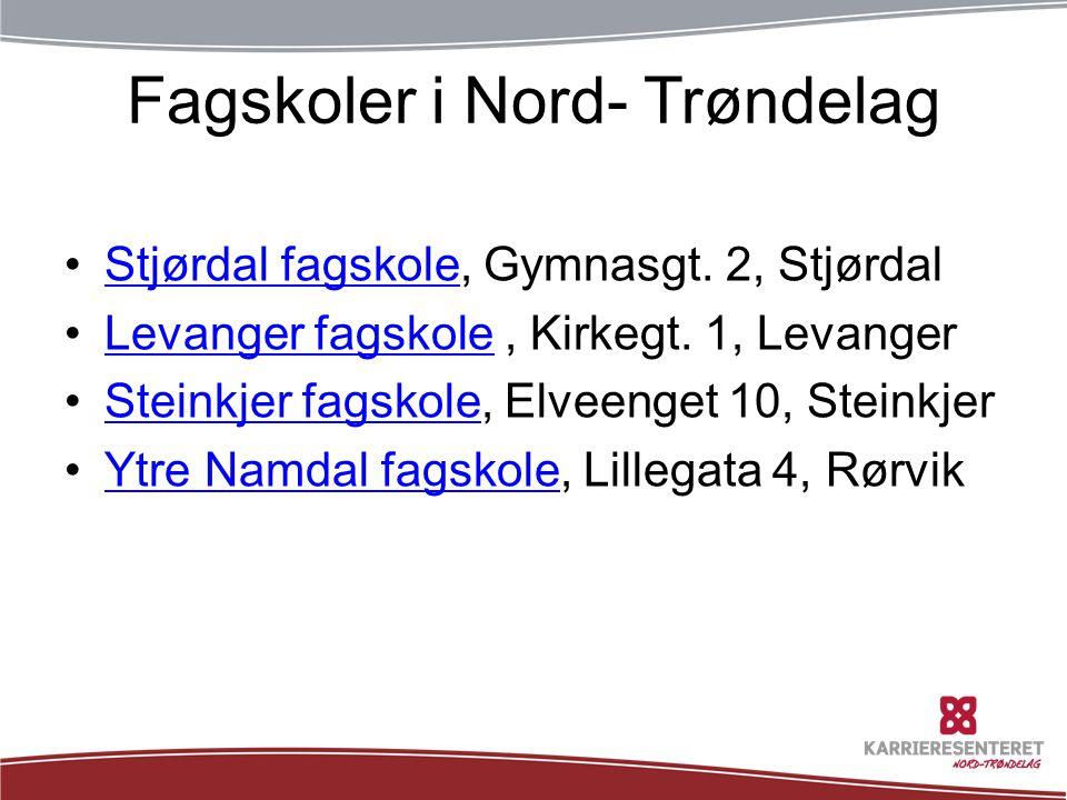 Fagskoler i Nord- Trøndelag •Stjørdal fagskole, Gymnasgt. 2, StjørdalStjørdal fagskole •Levanger fagskole, Kirkegt. 1, LevangerLevanger fagskole •Stei
