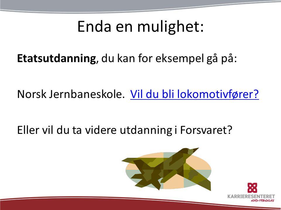 Enda en mulighet: Etatsutdanning, du kan for eksempel gå på: Norsk Jernbaneskole. Vil du bli lokomotivfører?Vil du bli lokomotivfører? Eller vil du ta