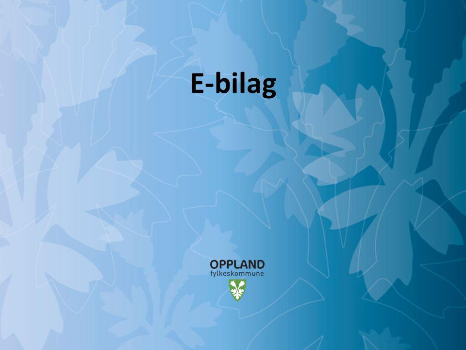 E-bilag