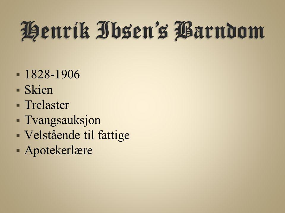  1828-1906  Skien  Trelaster  Tvangsauksjon  Velstående til fattige  Apotekerlære