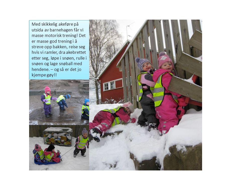 Med skikkelig akeføre på utsida av barnehagen får vi masse motorisk trening! Det er masse god trening i å streve opp bakken, reise seg hvis vi ramler,