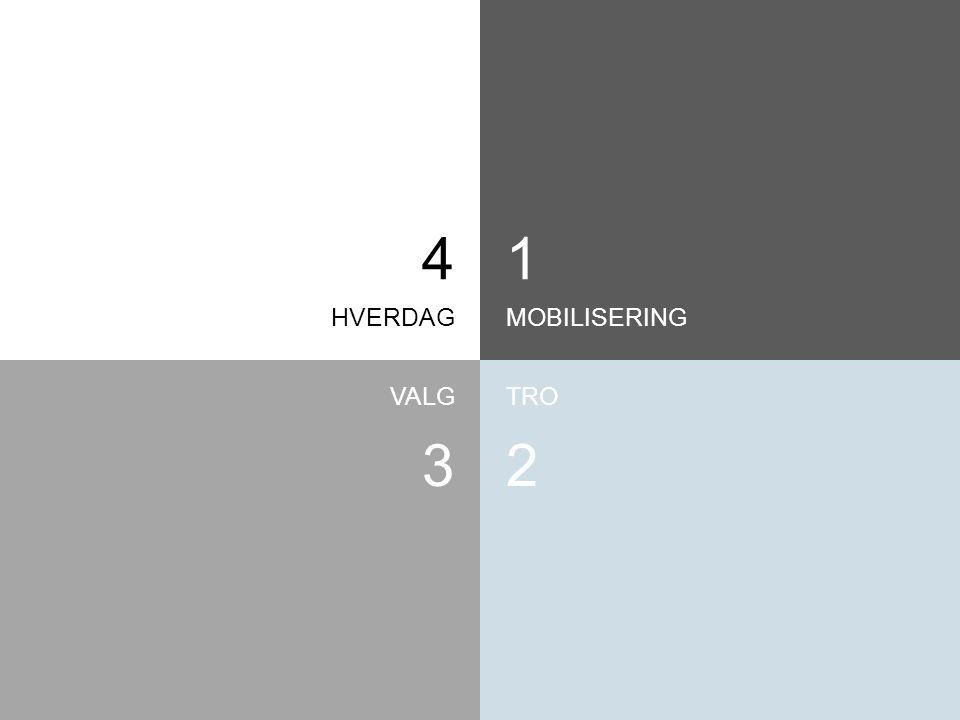 HVERDAGMOBILISERING TROVALG 1 2 4 3
