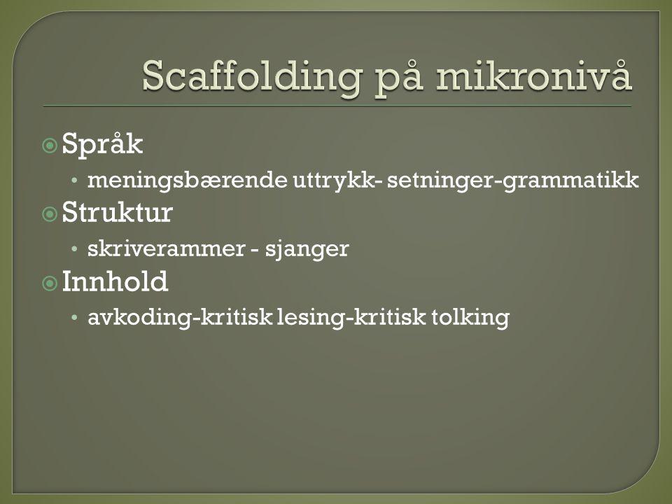  Språk • meningsbærende uttrykk- setninger-grammatikk  Struktur • skriverammer - sjanger  Innhold • avkoding-kritisk lesing-kritisk tolking