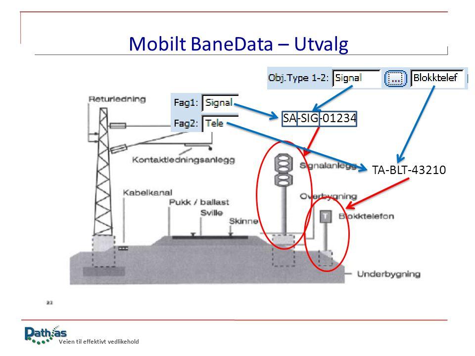 Veien til effektivt vedlikehold Mobilt BaneData – Utvalg SA-SIG-01234 TA-BLT-43210