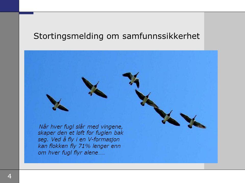 4 Stortingsmelding om samfunnssikkerhet Når hver fugl slår med vingene, skaper den et løft for fuglen bak seg. Ved å fly i en V-formasjon kan flokken