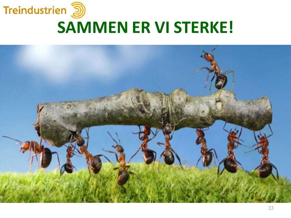 SAMMEN ER VI STERKE! 33