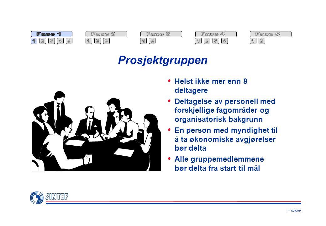 7 - 6/29/2014 Prosjektgruppen  Helst ikke mer enn 8 deltagere  Deltagelse av personell med forskjellige fagområder og organisatorisk bakgrunn  En p