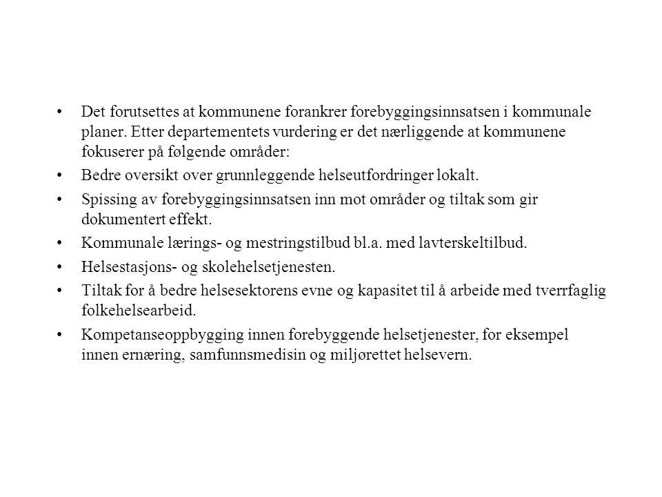 Hva er det ustabile elementet i den norske helsetjenesten?