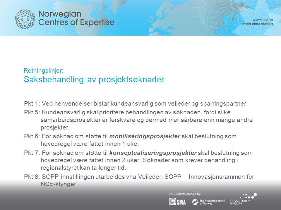 Retningslinjer: Saksbehandling av prosjektsøknader Pkt 1: Ved henvendelser bistår kundeansvarlig som veileder og sparringspartner.
