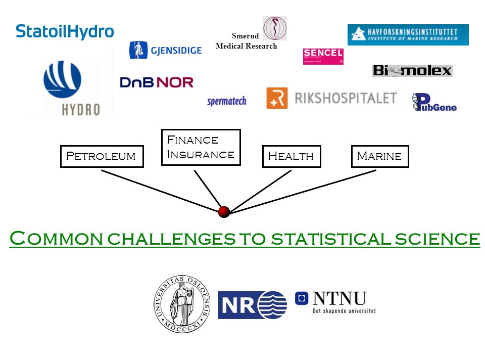Petroleum Finance Insurance HealthMarine Common challenges to statistical science Smerud Medical Research