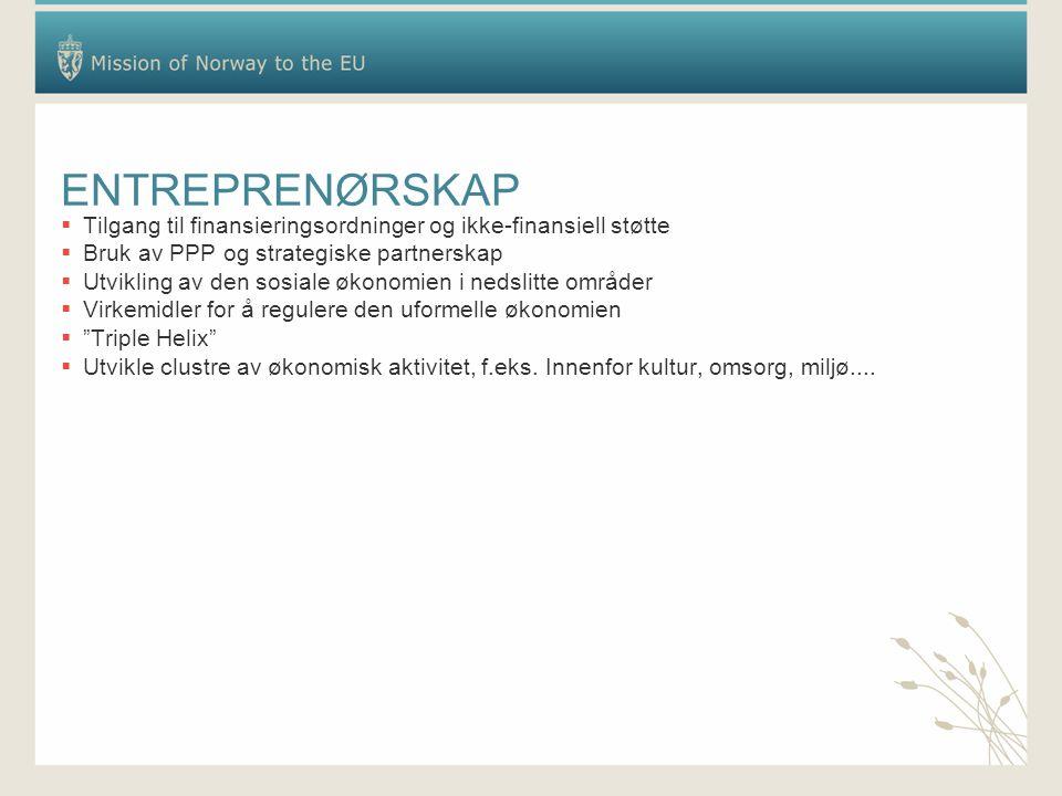 ENTREPRENØRSKAP  Tilgang til finansieringsordninger og ikke-finansiell støtte  Bruk av PPP og strategiske partnerskap  Utvikling av den sosiale øko
