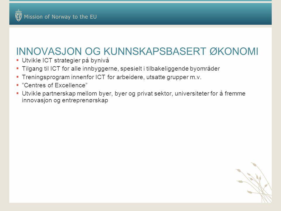 INNOVASJON OG KUNNSKAPSBASERT ØKONOMI  Utvikle ICT strategier på bynivå  Tilgang til ICT for alle innbyggerne, spesielt i tilbakeliggende byområder  Treningsprogram innenfor ICT for arbeidere, utsatte grupper m.v.