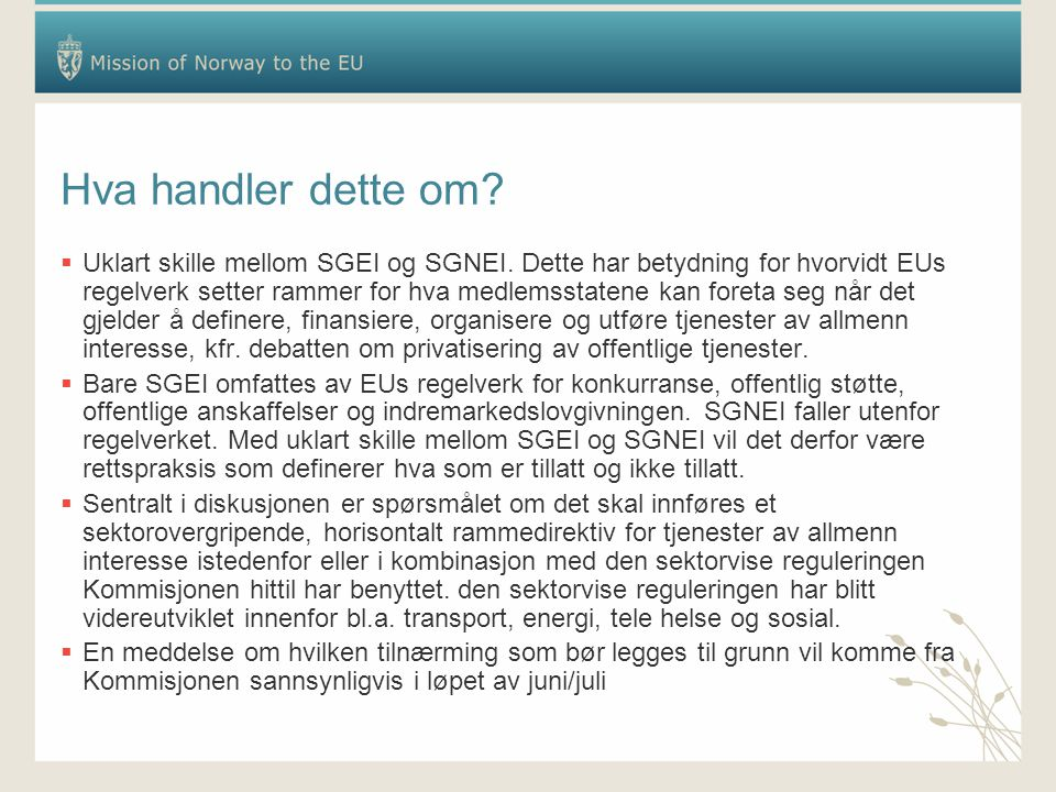 Hva handler dette om?  Uklart skille mellom SGEI og SGNEI. Dette har betydning for hvorvidt EUs regelverk setter rammer for hva medlemsstatene kan fo