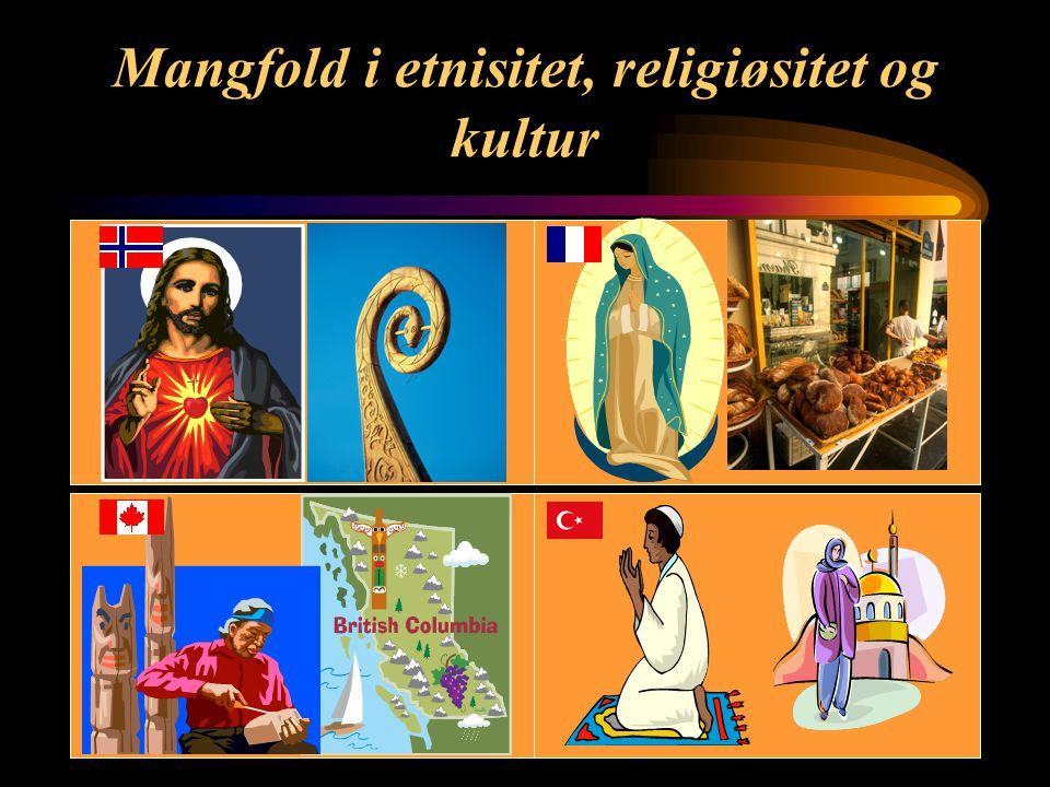 Mangfold i etnisitet, religiøsitet og kultur