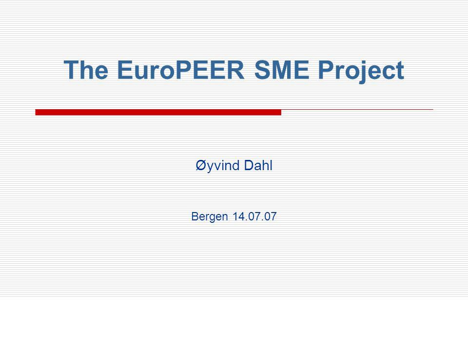 Oversikt  Bakgrunn: Lisboastrategien  Mål for EuroPEER SME  Prosjektfaser og arbeidspakker  Organisering og oppygging av prosjektet  EuroPEER SME Tidslinje