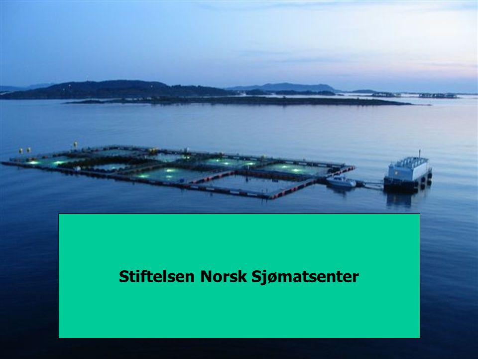 Sats på torsk 1999-2002 Go for Cod 2002- 2005 MarketsProcessingCodProdJuveniles Development goal: Cod Farming increasing to be a major marine farmed species in Norway Result objective: Yearly production 10000 tons in Norway 2005.