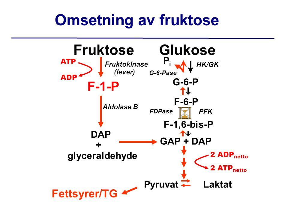 Glukose G-6-P F-6-P GAP + DAP Fruktose F-1-P DAP + glyceraldehyde F-1,6-bis-P Fruktokinase (lever) HK/GK Aldolase B PFK Omsetning av fruktose Pyruvat