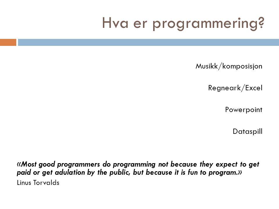 Hva er programmering.