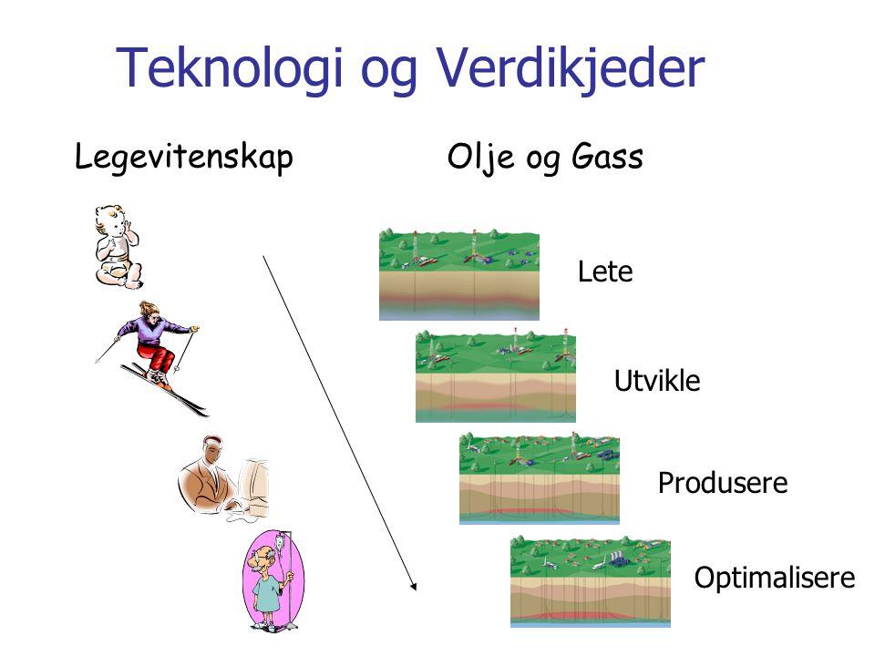 Teknologi og Verdikjeder Lete Utvikle Produsere Optimalisere Legevitenskap Olje og Gass