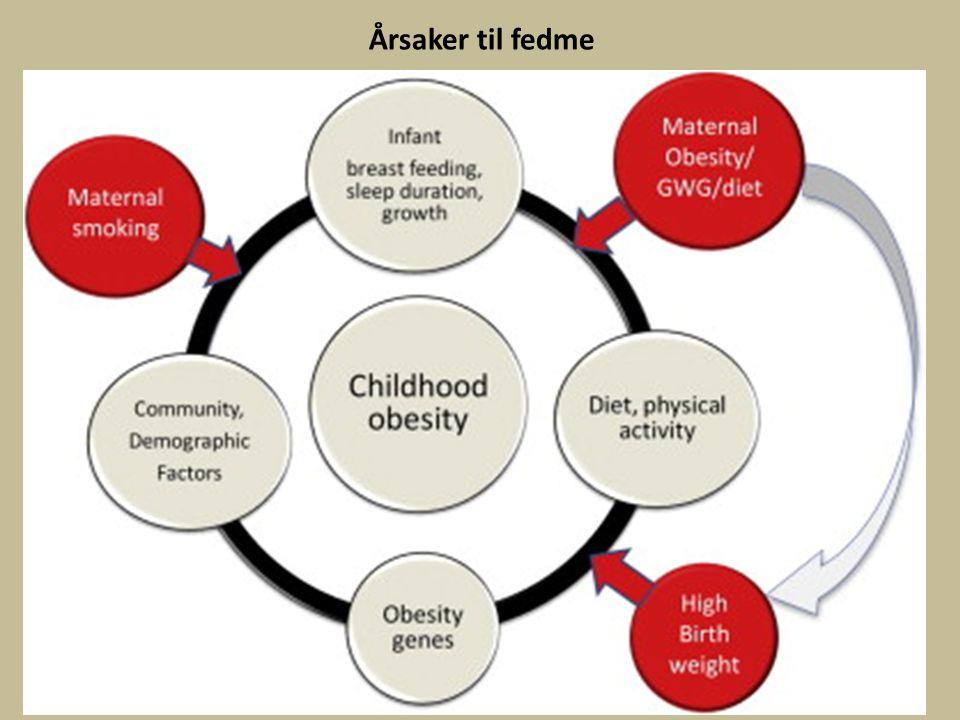 Årsaker til fedme