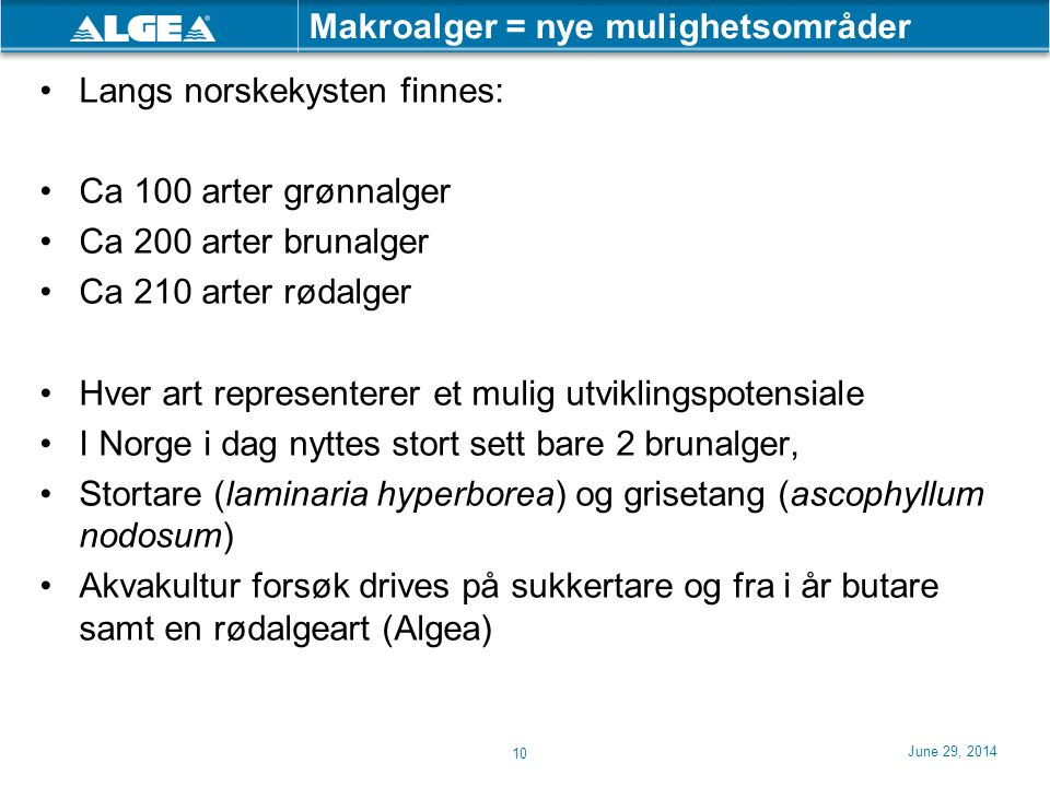 June 29, 2014 10 Makroalger = nye mulighetsområder •Langs norskekysten finnes: •Ca 100 arter grønnalger •Ca 200 arter brunalger •Ca 210 arter rødalger