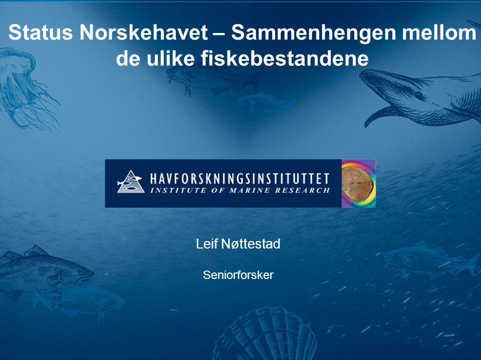 Status Norskehavet – Sammenhengen mellom de ulike fiskebestandene Leif Nøttestad Seniorforsker