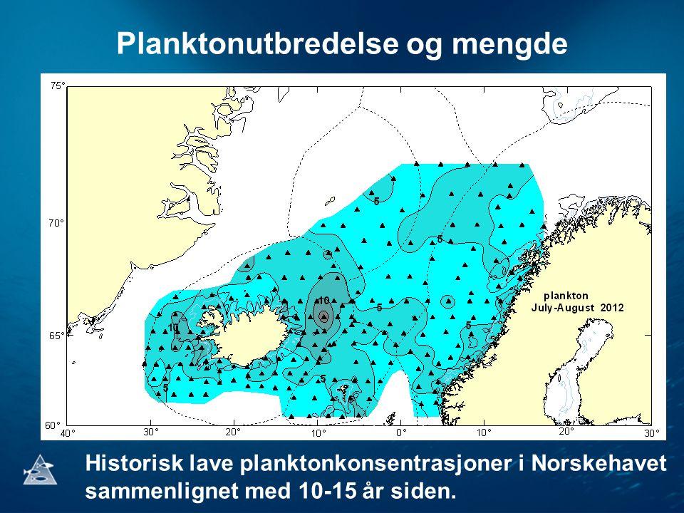 Planktonutbredelse og mengde Historisk lave planktonkonsentrasjoner i Norskehavet sammenlignet med 10-15 år siden.