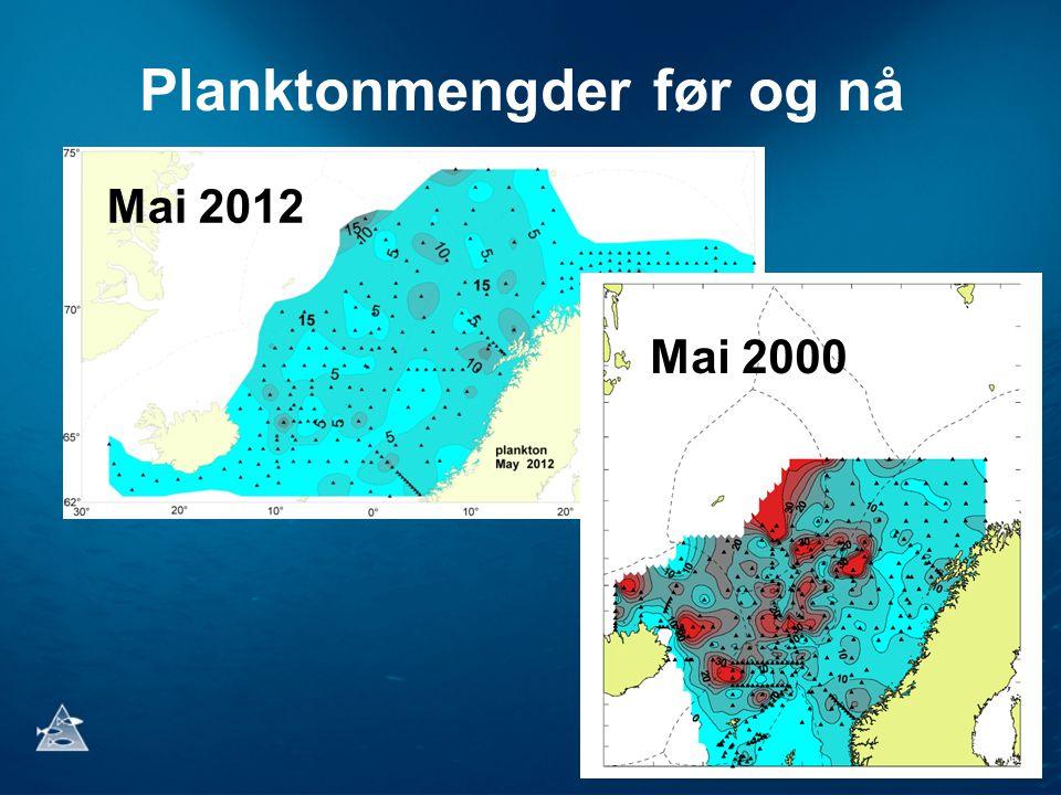 Planktonmengder før og nå Mai 2012 Mai 2000