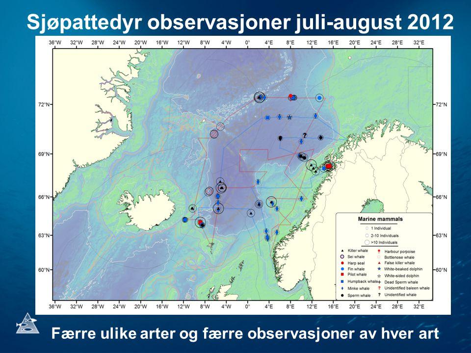 Sjøpattedyr observasjoner juli-august 2012 Færre ulike arter og færre observasjoner av hver art