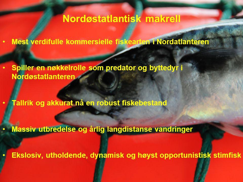 Hovedkonklusjoner •Den nordøstatlantiske makrellbestanden er robust i Norskehavet med 5.1 million tonn total biomasse målt sommeren 2012 •Disse resultatene regnes som underestimater grunnet mangelfull geografisk og vertikal dekning •Betydelige endringer i vandring, aggregering og utbredelse av makrellen i beiteperioden i løpet av de siste få årene.
