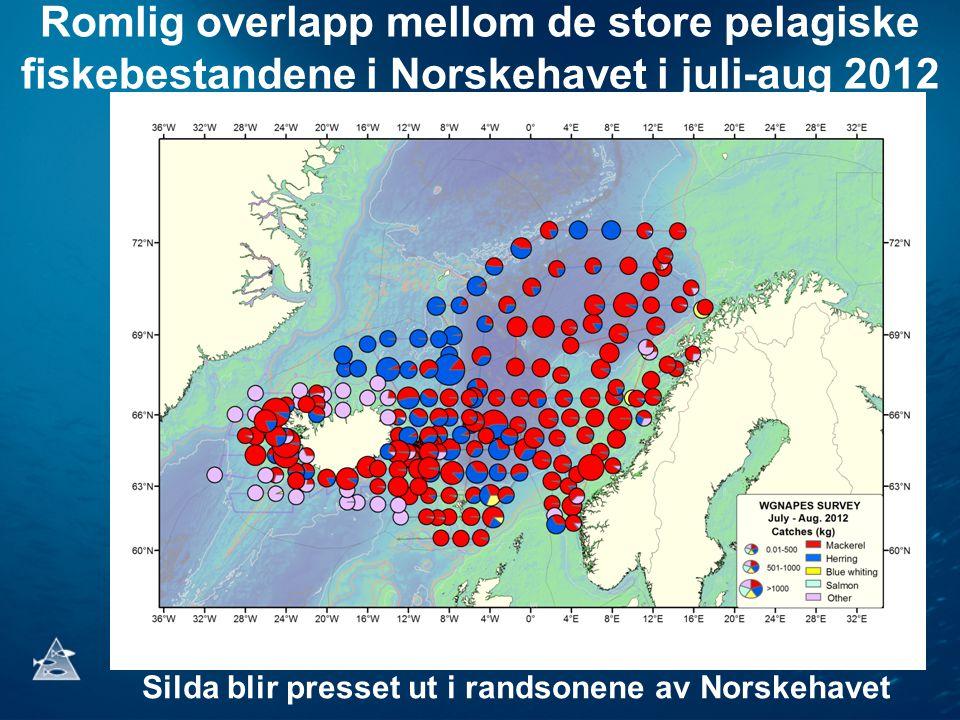 Romlig overlapp mellom de store pelagiske fiskebestandene i Norskehavet i juli-aug 2012 Silda blir presset ut i randsonene av Norskehavet