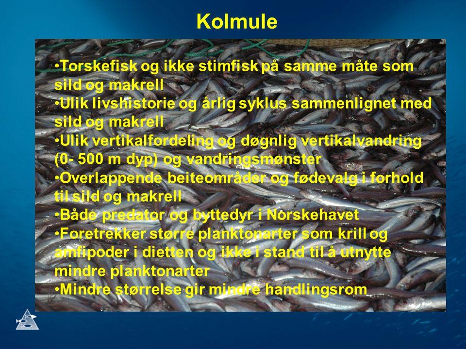Kolmule •Torskefisk og ikke stimfisk på samme måte som sild og makrell •Ulik livshistorie og årlig syklus sammenlignet med sild og makrell •Ulik vertikalfordeling og døgnlig vertikalvandring (0- 500 m dyp) og vandringsmønster •Overlappende beiteområder og fødevalg i forhold til sild og makrell •Både predator og byttedyr i Norskehavet •Foretrekker større planktonarter som krill og amfipoder i dietten og ikke i stand til å utnytte mindre planktonarter •Mindre størrelse gir mindre handlingsrom