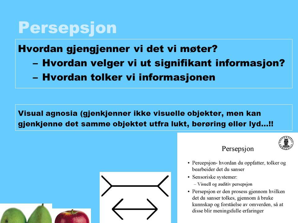 Persepsjon Hvordan gjengjenner vi det vi møter? –Hvordan velger vi ut signifikant informasjon? –Hvordan tolker vi informasjonen Visual agnosia (gjenkj