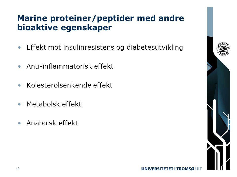 Marine proteiner/peptider med andre bioaktive egenskaper •Effekt mot insulinresistens og diabetesutvikling •Anti-inflammatorisk effekt •Kolesterolsenkende effekt •Metabolsk effekt •Anabolsk effekt 15
