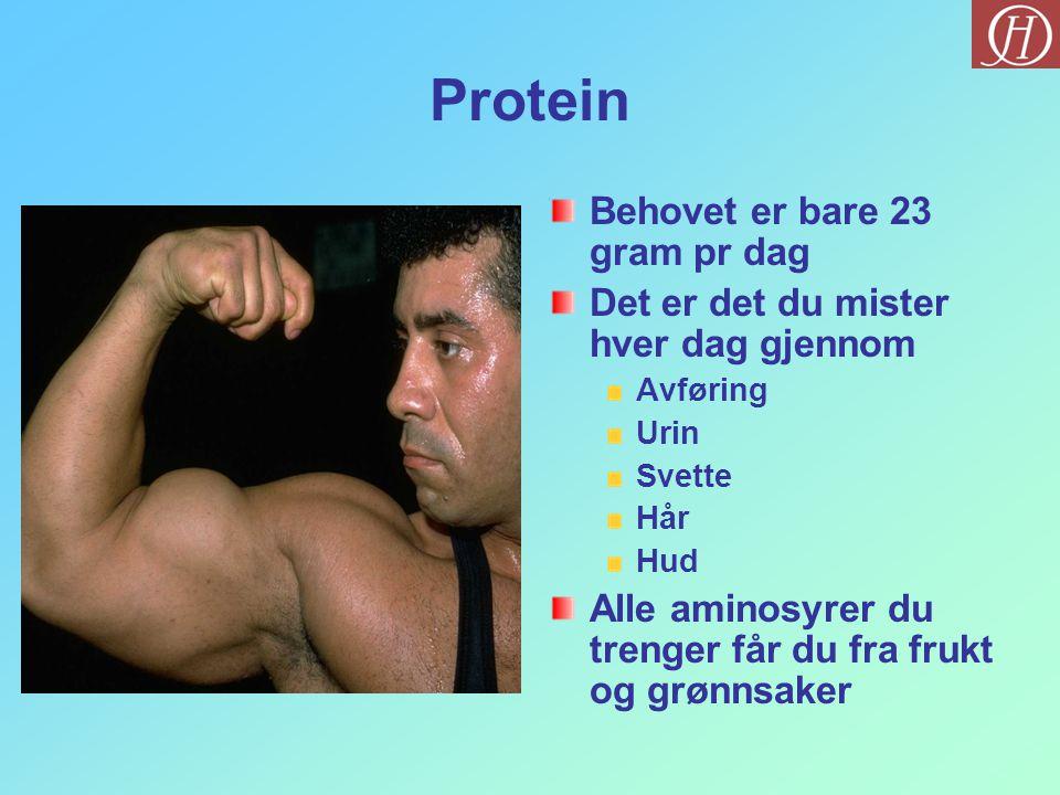 Protein Behovet er bare 23 gram pr dag Det er det du mister hver dag gjennom Avføring Urin Svette Hår Hud Alle aminosyrer du trenger får du fra frukt og grønnsaker