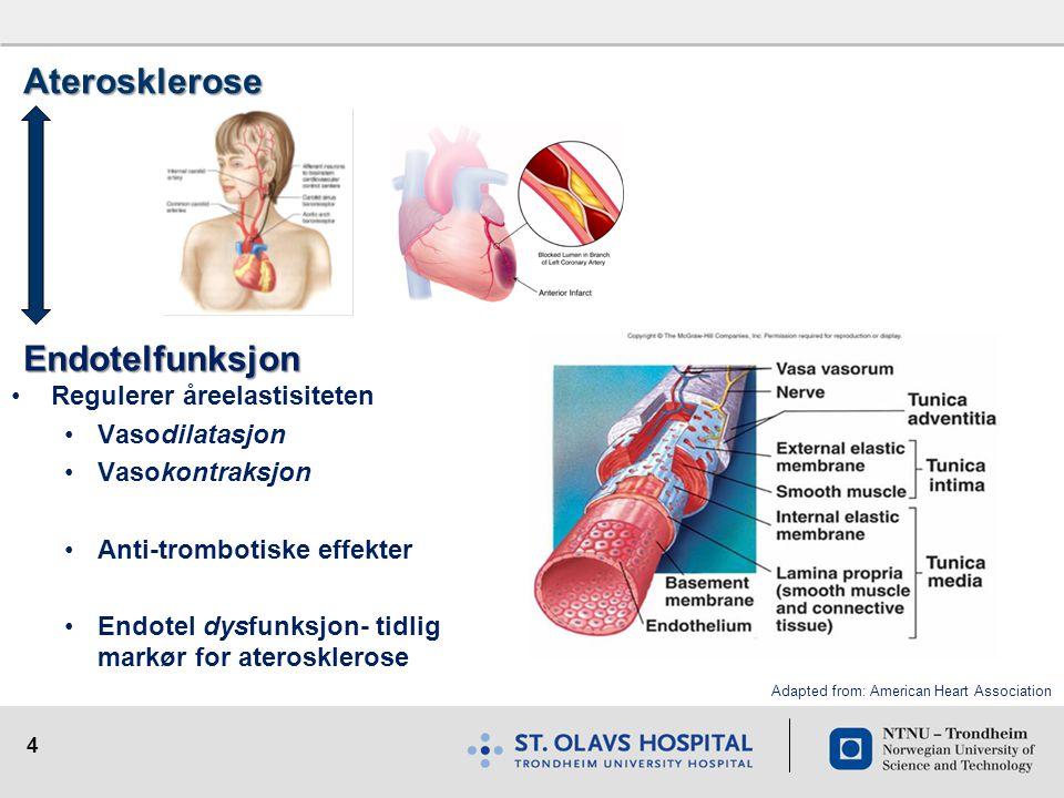4 Aterosklerose Endotelfunksjon •Regulerer åreelastisiteten •Vasodilatasjon •Vasokontraksjon •Anti-trombotiske effekter •Endotel dysfunksjon- tidlig m