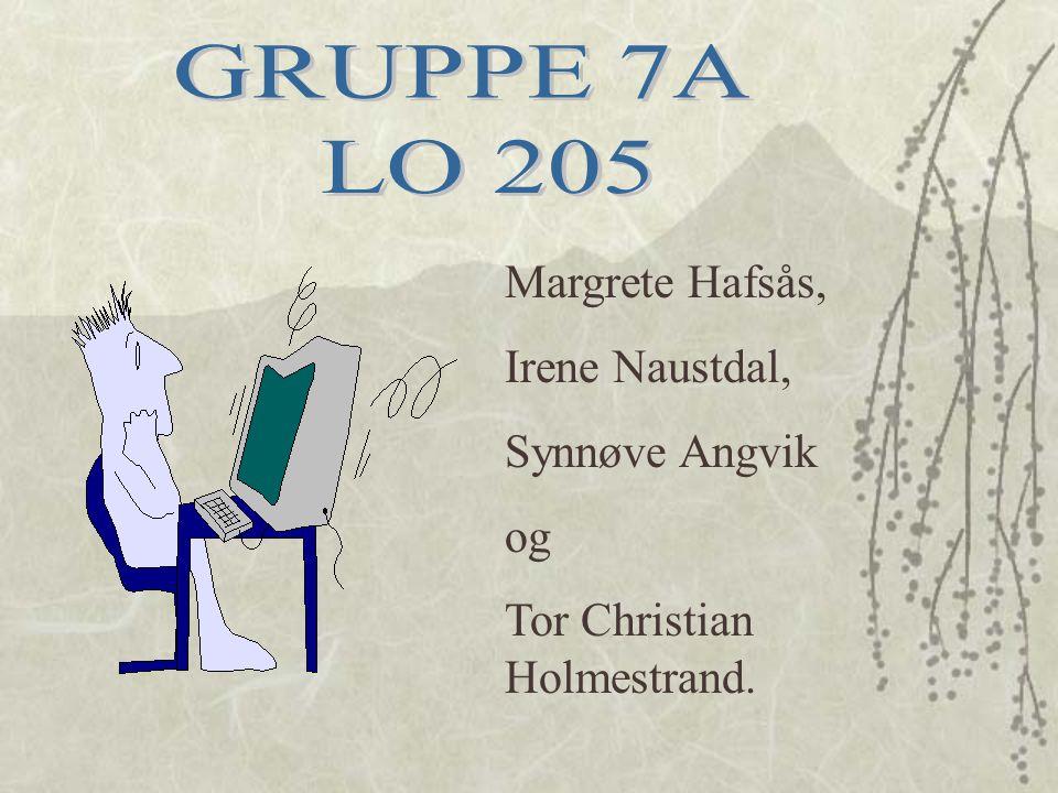 Margrete Hafsås, Irene Naustdal, Synnøve Angvik og Tor Christian Holmestrand.