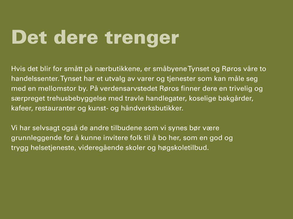 Regionrådet for Fjellregionen11