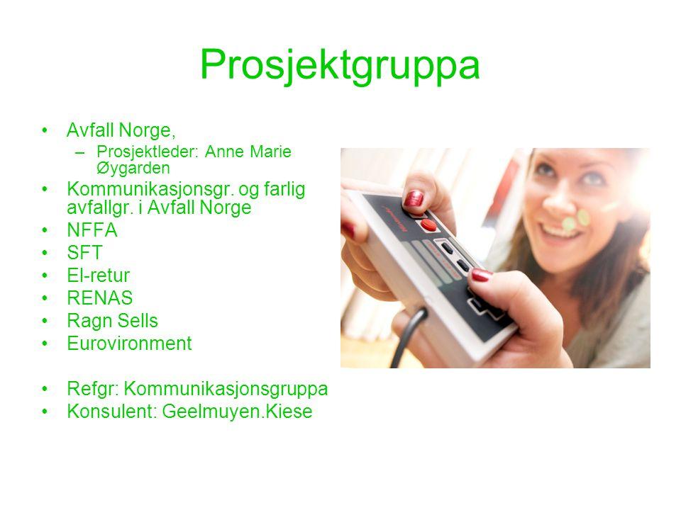 Prosjektgruppa •Avfall Norge, –Prosjektleder: Anne Marie Øygarden •Kommunikasjonsgr. og farlig avfallgr. i Avfall Norge •NFFA •SFT •El-retur •RENAS •R