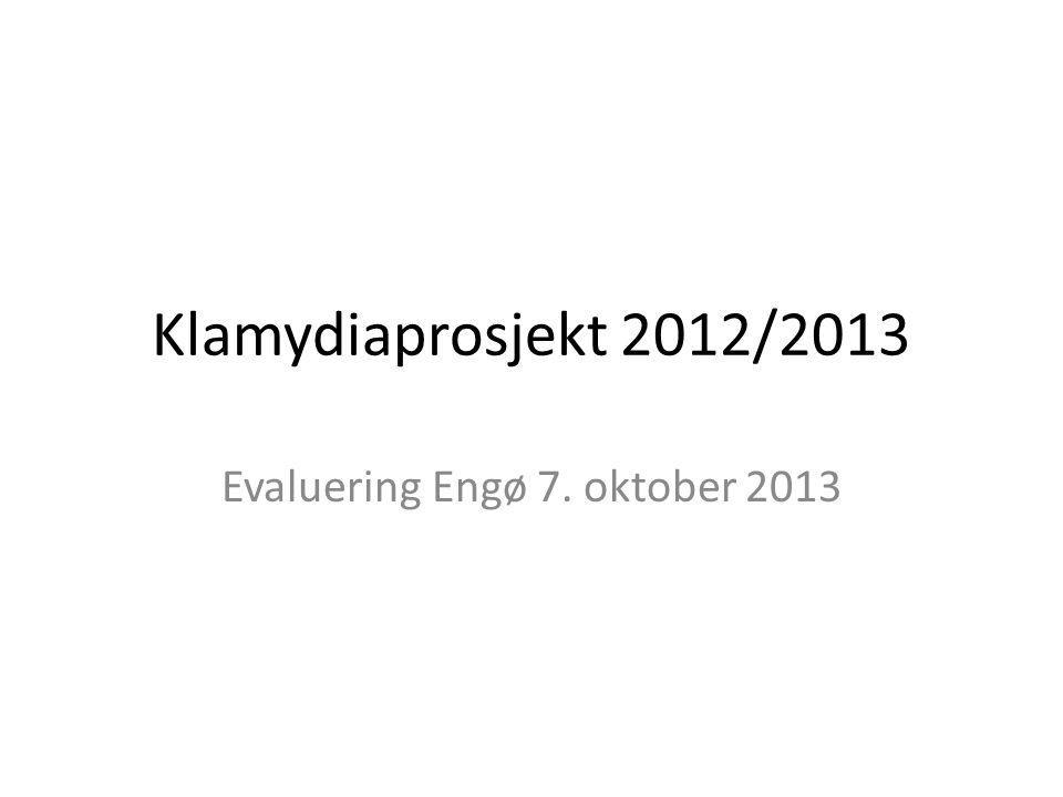 Klamydiaprosjekt 2012/2013 Evaluering Engø 7. oktober 2013