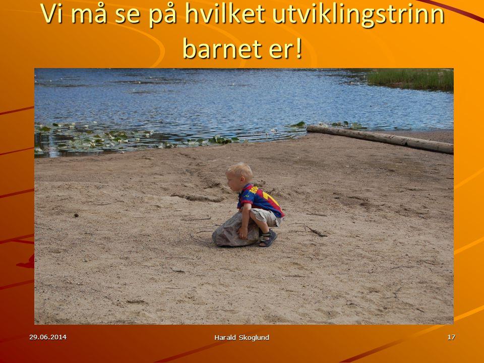Vi må se på hvilket utviklingstrinn barnet er! 29.06.2014 Harald Skoglund 17