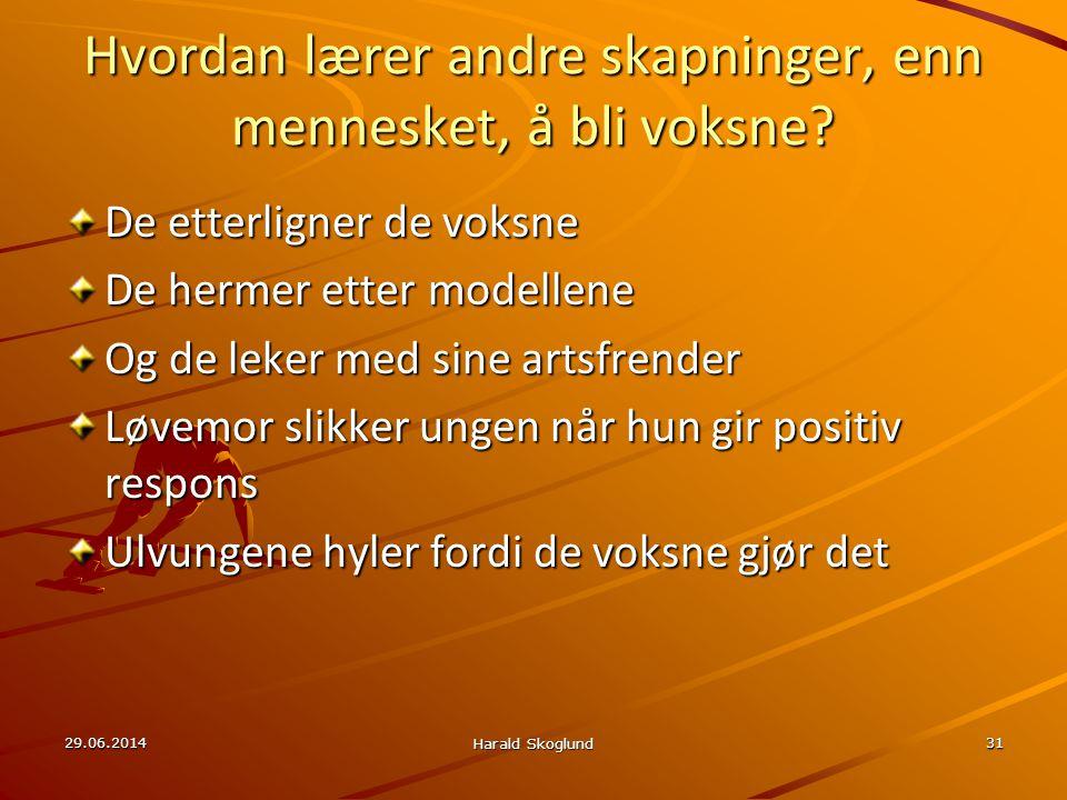 29.06.2014 Harald Skoglund 31 Hvordan lærer andre skapninger, enn mennesket, å bli voksne? De etterligner de voksne De hermer etter modellene Og de le