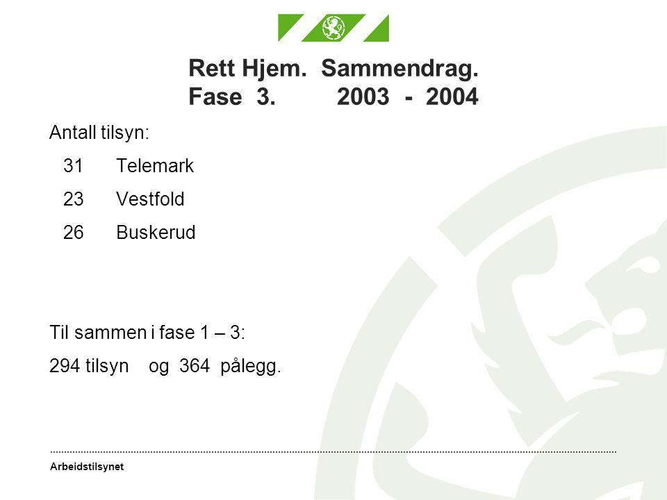 Arbeidstilsynet Rett Hjem. Sammendrag. Fase 3. 2003 - 2004 Antall tilsyn: 31Telemark 23Vestfold 26Buskerud Til sammen i fase 1 – 3: 294 tilsyn og 364
