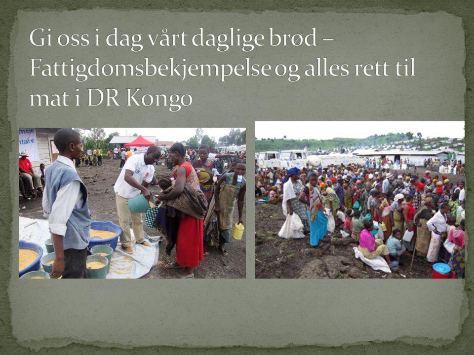  Fattigdom: Manglende mulighet til å leve et fullverdig liv  Absolutt fattigdom  Kongo: 87,7%  Relativ fattigdom
