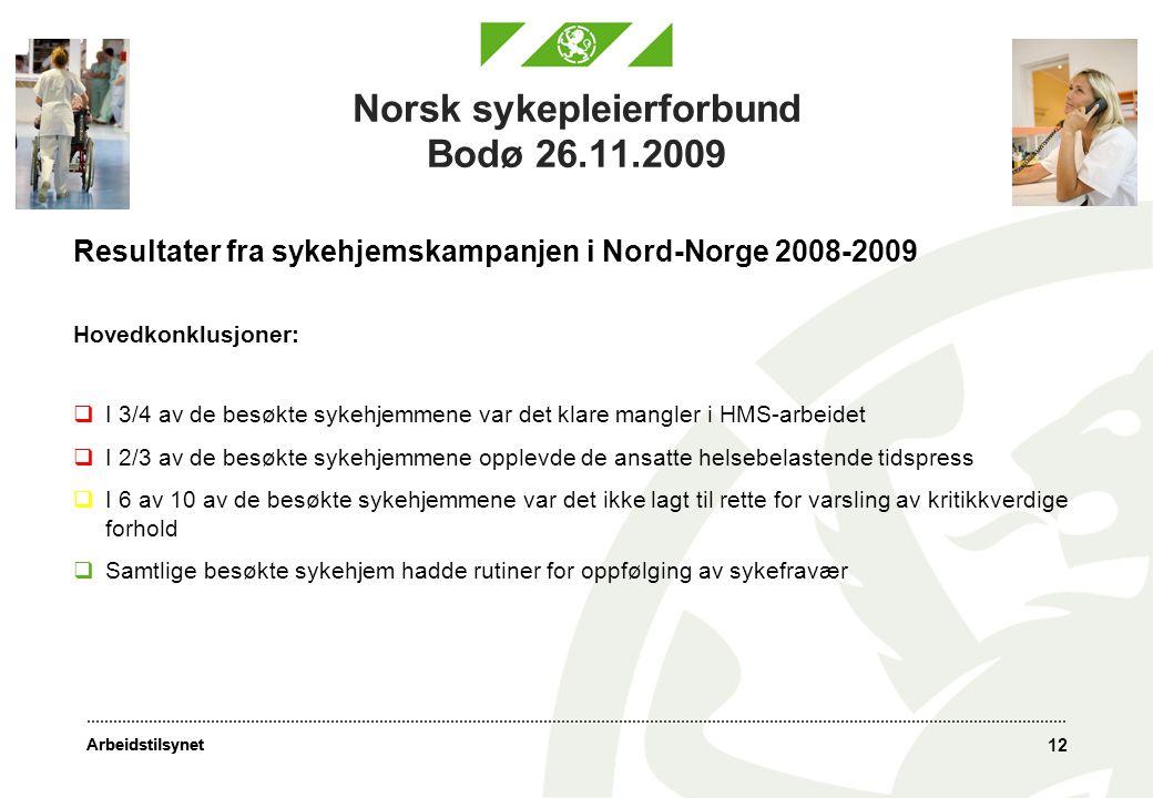 Arbeidstilsynet 12 Norsk sykepleierforbund Bodø 26.11.2009 Resultater fra sykehjemskampanjen i Nord-Norge 2008-2009 Hovedkonklusjoner:  I 3/4 av de besøkte sykehjemmene var det klare mangler i HMS-arbeidet  I 2/3 av de besøkte sykehjemmene opplevde de ansatte helsebelastende tidspress  I 6 av 10 av de besøkte sykehjemmene var det ikke lagt til rette for varsling av kritikkverdige forhold  Samtlige besøkte sykehjem hadde rutiner for oppfølging av sykefravær