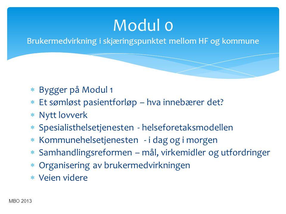 SPESIALISTHELSETJENESTEN Helseforetak (HF) Kommunene Råd for m.