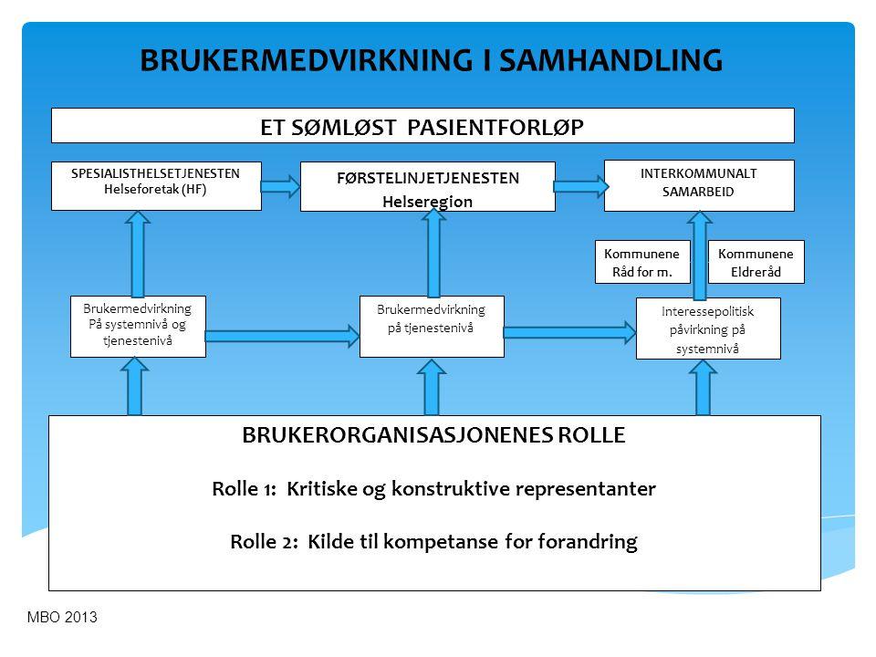 Helseforetak (HF) Kommune 1 Råd for m.