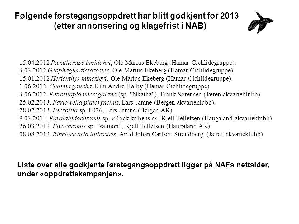 Følgende førstegangsoppdrett har blitt godkjent for 2013 (etter annonsering og klagefrist i NAB) 15.04.2012 Paratheraps breidohri, Ole Marius Ekeberg (Hamar Cichlidegruppe).