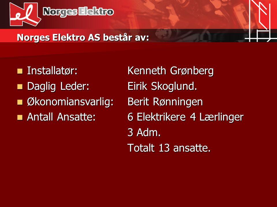 Norges Elektro AS utfører installasjoner innen:  Bolig.